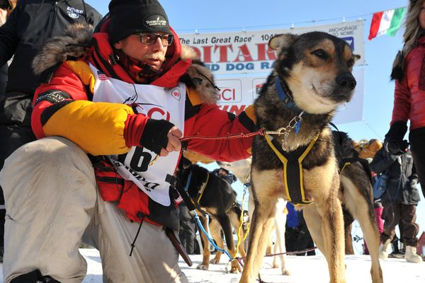 Iditarod musher Mitch Seavey poses with one of his leaders Pilot after winning the 2017 Iditarod Trail Sled Dog Race on Tuesday, March 14, 2017. (Bob Hallinen / Alaska Dispatch News)