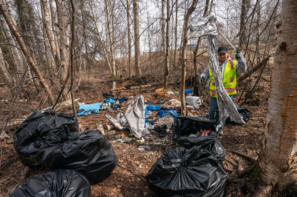 Municipality of Anchorage Parks and Recreation employee Nicole Limberg cleans up a homeless camp in the Chester Creek Greenbelt on Wednesday. (Loren Holmes / ADN)