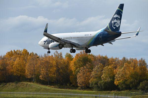 An Alaska Airlines Boeing 737 passenger jet lands at Ted Stevens Anchorage International Airport on Thursday, Oct. 1, 2020. (Bill Roth / ADN)