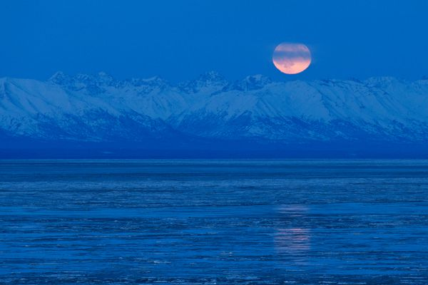 The last full moon of 2020 rises into view from the overlook near Earthquake Park in West Anchorage on December 29, 2020. (Marc Lester / ADN)