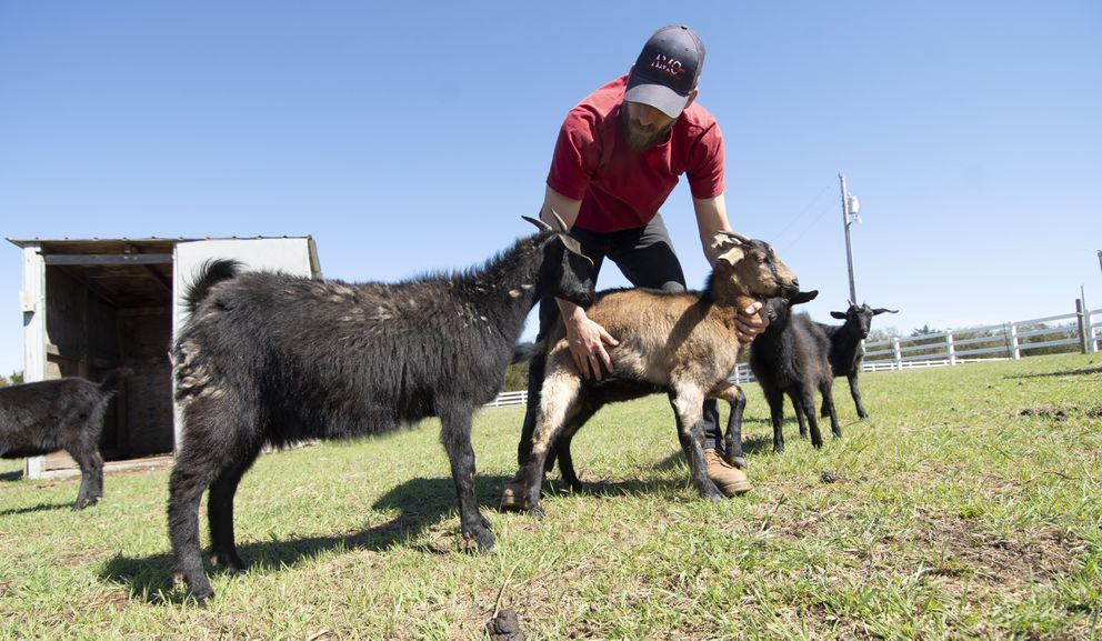 Michael Behenna works with his goats at his farm near Guthrie, Okla. (Photo for The Washington Post by J Pat Carter)