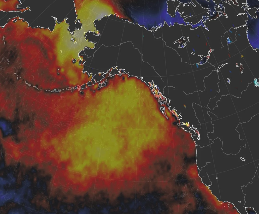 Sea surface temperature anomalies highlight the expansive blob of warm water around Alaska. (earth.nullschool.net)