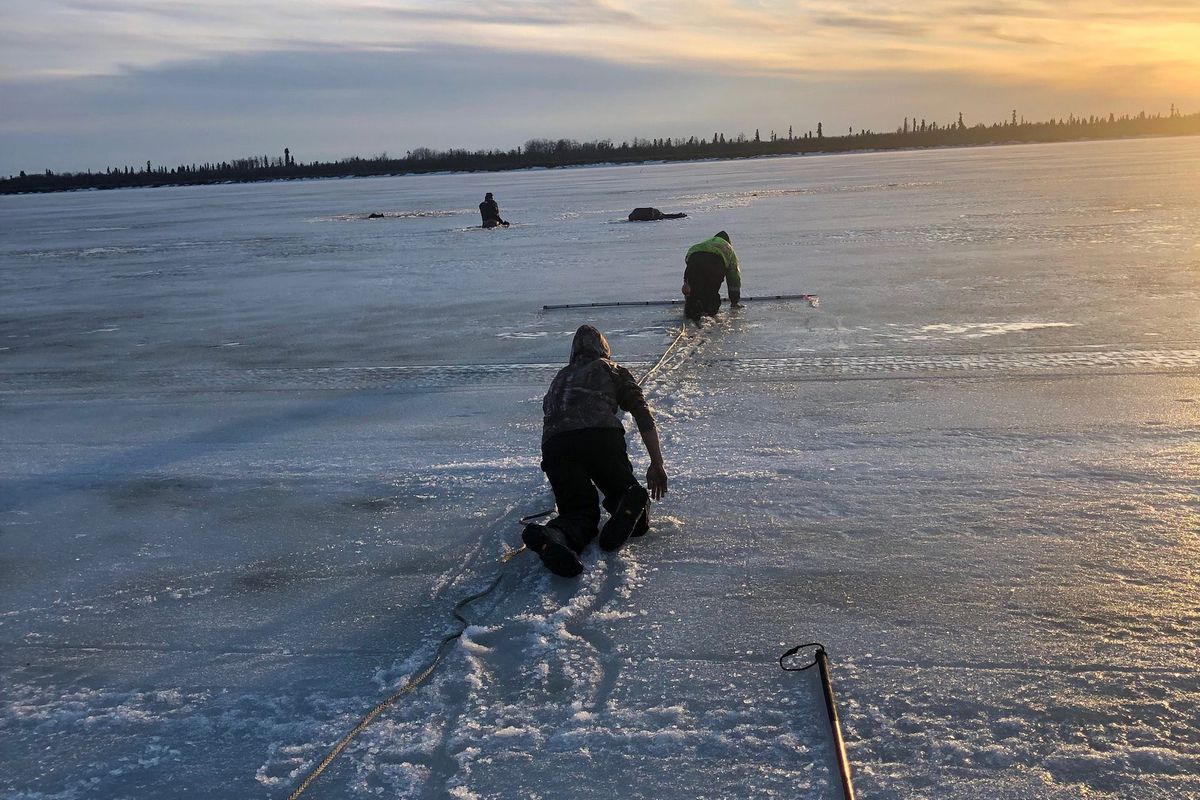 Charles Guest (closest to camera) and Mark Leary with the Bethel Search and Rescue team crawl across the rotten Kuskokwim River ice, attempting to rescue people after their four-wheelers went through the ice, March 31, 2019. (Photo provided by Bethel Search and Rescue)