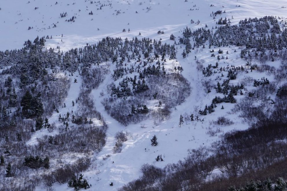 The avalanche that occurred on March 9, 2019, on a slope off Madson Mountain just above Crescent Lake killed 33-year-old backcountry skier Jeff Cheng, of Anchorage. Three days later, when this photo was taken, the crown of the avalanche was completely blown in. Based on a description from the parties involved, the crown was in the peppered trees above the treeline and the avalanche ran in three channels of debris. (Courtesy Chugach National Forest Avalanche Information Center)