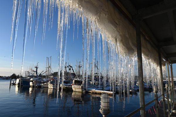 A curtain of icicles develops on the deck roof of Mean Queen at Totem Square as the blanket of snow slowly melts and slides. The ANB Harbor, one of Sitka's five harbors, is in the background. Photographed Sunday, Jan. 12, 2020. (Anne Raup / ADN)