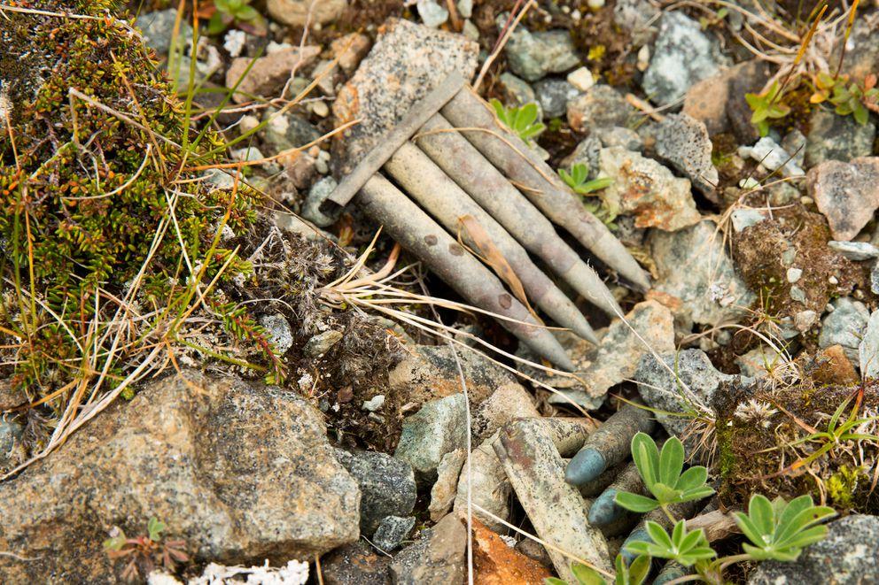 Artillery from the Japanese camp, Kiska. (Lisa Hupp/USFWS)