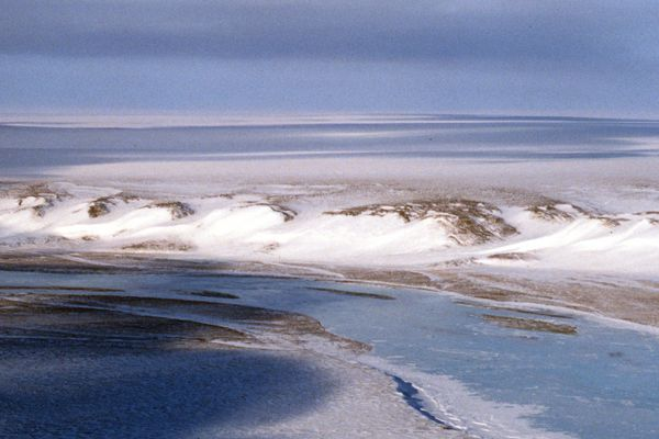 The coastal plain of the Arctic National Wildlife Refuge stretches away to the north and east of the Canning River as it flattens out between the foothills of the Brooks Range and the Beaufort Sea, March 20, 2001. The river serves as the western boundary of the coastal plain. (Erik Hill / Anchorage Daily News 2001 archive)