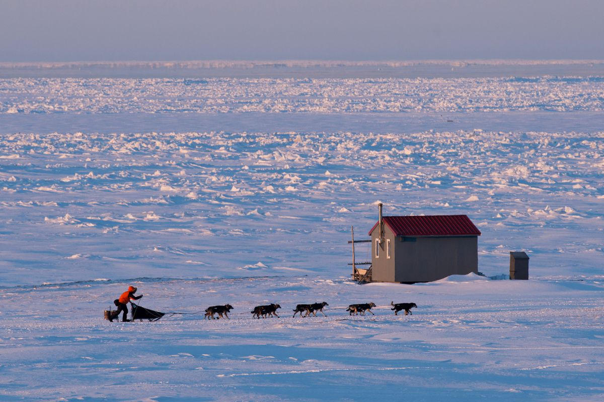 With Nome just a few miles away, a team races toward the finish line during the 2017 Iditarod. (Marc Lester / ADN archive)