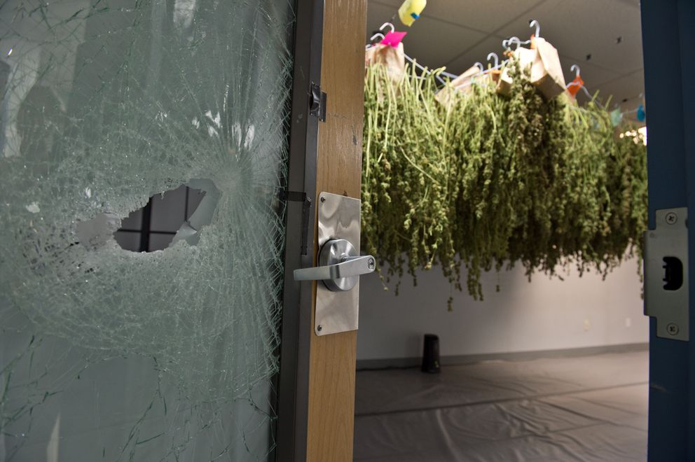 Marijuana was stolen from cultivation business Danish Gardens early Dec. 19, 2017. Packaged product was taken from a room used for storage and drying. (Marc Lester/ ADN)