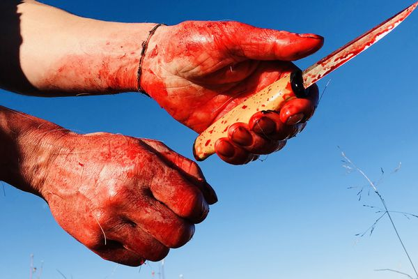 Hands covered with fish blood after filleting a salmon. (Seth Kantner photo)