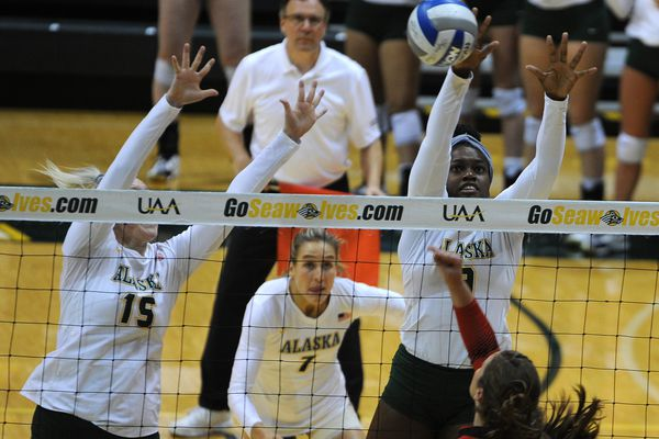 The UAA Seawolves defeated the Saint Martin's Saints 3-0 in volleyball at the Alaska Airlines Center on the campus of UAA in Anchorage, Alaska on Thursday, Sept. 21, 2017. (Bob Hallinen / Alaska Dispatch News)