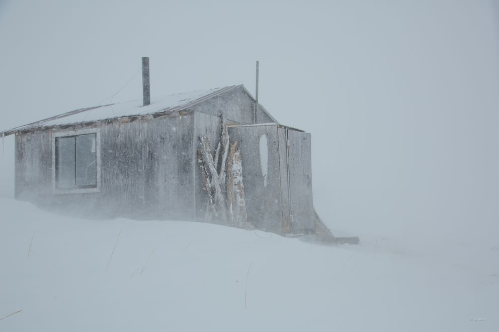 The Gallahan shelter is bombarded by a late-winter blizzard in March 2016. The Gallahan shelter sits on the trail between Buckland and Kotzebue, on the southern shore of the Baldwin Peninsula.(Bjørn Olson)