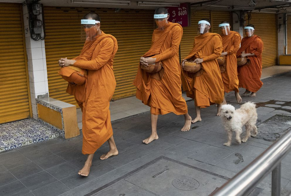 Thai Buddhist monks wear face shields to protect themselves from new coronavirus as they walk to collect alms from devotees in Bangkok, Thailand, Tuesday, March 31, 2020. (AP Photo/Sakchai Lalit)