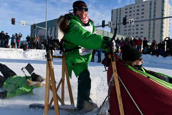 A rider on Ryan Redington's second sled falls off as they team rounds the corner at 4th Avenue and Cordova Street. Fifty-two mushers and dog teams ran across Anchorage for the ceremonial start of Iditarod 2019 on March 2, 2019. (Marc Lester / ADN)