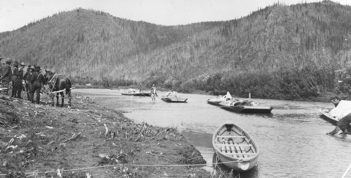 Horse-towed freight scows arrive at Ophir, on the upper Innoko River, from Dishkaket on July 24, 1910. (A.G. Maddren, USGS public domain image)