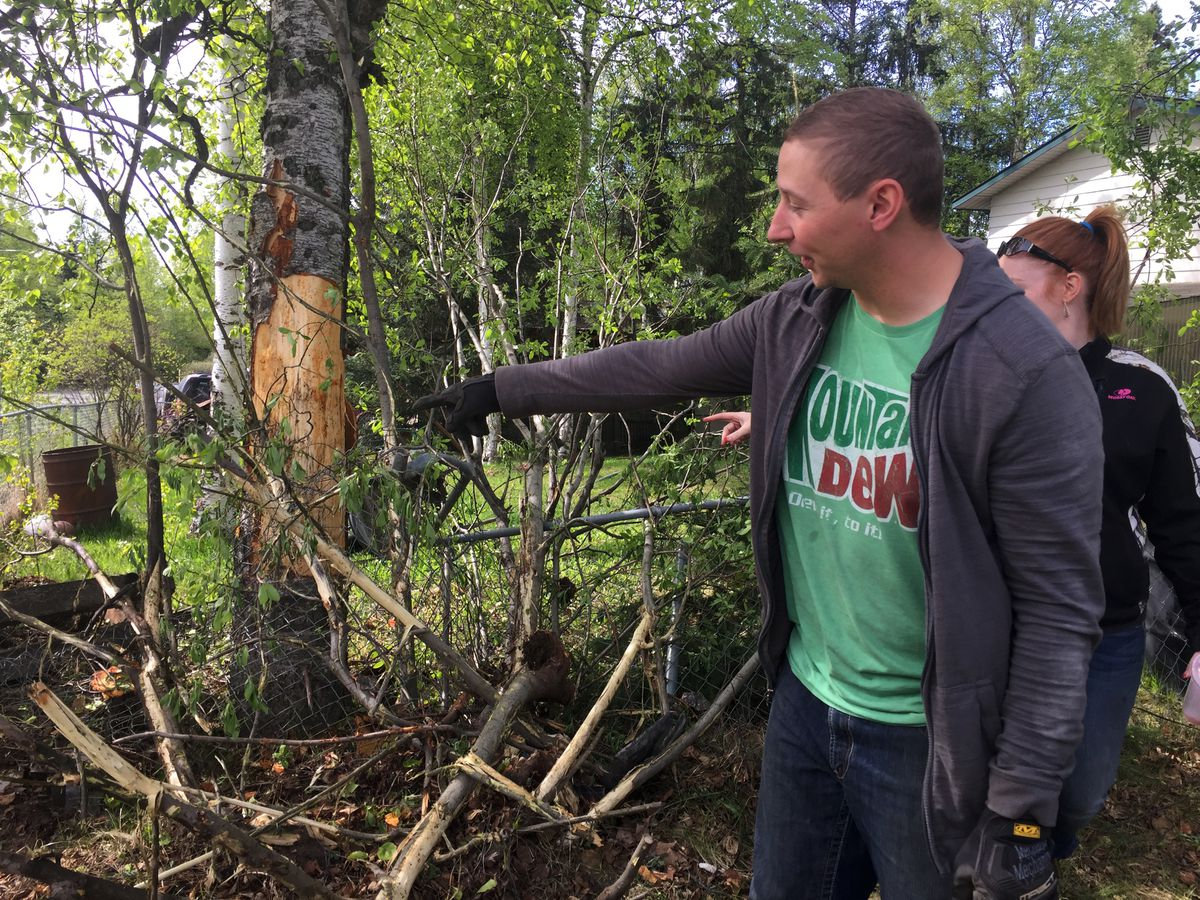 Homeowner David Dirkes points to damage caused when a man allegedly crashed a stolen vehicle early Saturday at the corner of Upper and Lower Sunny Circle in Eagle River. On Saturday afternoon, Brock Werder, 20, was arraigned on stolen vehicle charges related to the incident. (Matt Tunseth / Alaska Star)