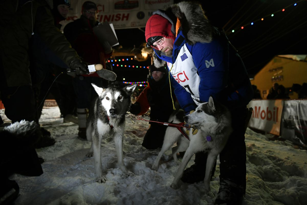 Mitch Seavey pets his lead dogs after he arrived in Nome early Wednesday to take second place in the Iditarod Trail Sled Dog Race. (Marc Lester / ADN)