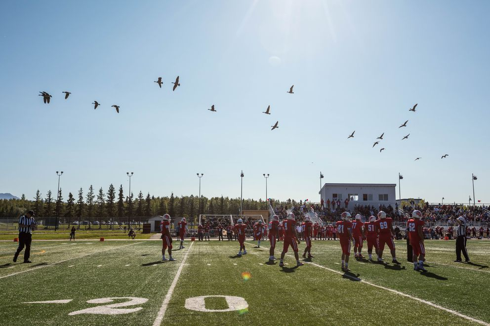 Canada geese fly over the East high football field during a game between East and Dimond on Saturday. East won 47-0. (Loren Holmes / ADN)