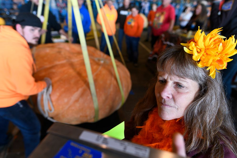 Crop superintendent Kathy Liska checks the readout as Dale Marshall's largest pumpkin is lowered to the scale. (Marc Lester / ADN)