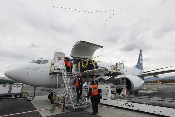 Alaska Airlines unveiled their first-ever next generation Boeing 737-700 freighter aircraft at their Anchorage cargo facility on Monday, Oct. 2, 2017. The aircraft were converted from passenger aircraft into the first of three 737-700 freighters designed and completed specifically for Alaska Air Cargo and are expected to increase cargo capacity by 15 percent to Alaska communities. These new aircraft will replace their five 737 combi aircraft and their one 737-400 freighter which are scheduled to end service at the end of the year. (Bill Roth / Alaska Dispatch News)