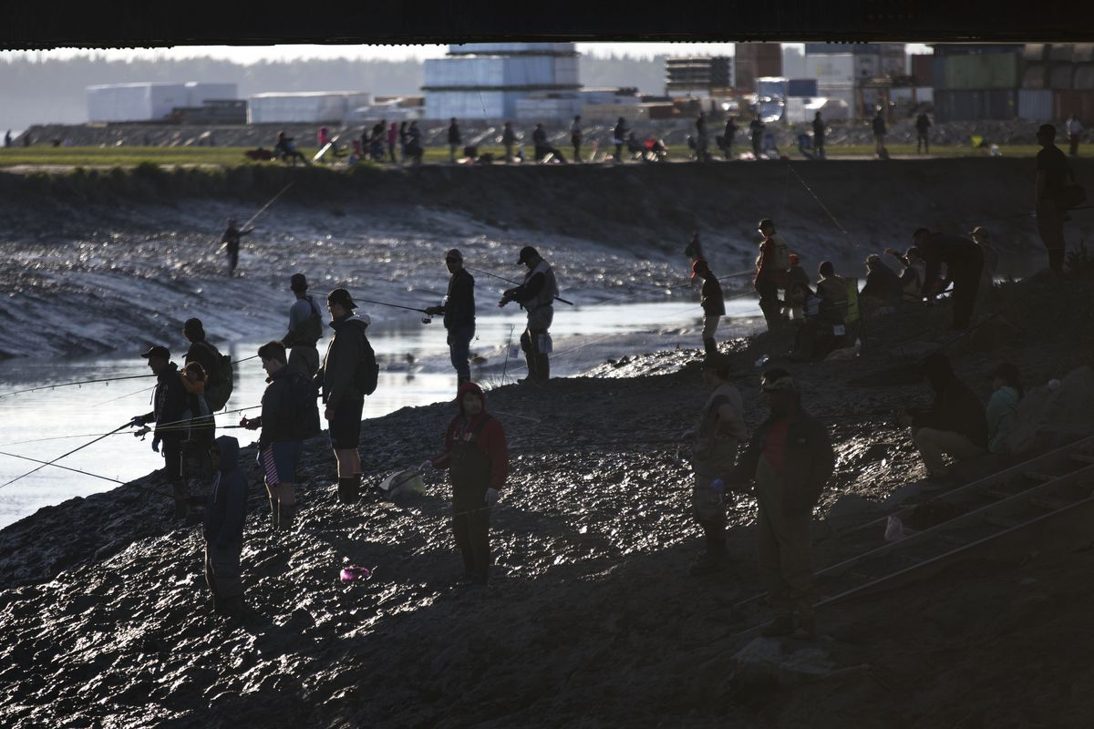 Dozens gather at Ship Creek to compete in the Slam'n Salm'n Derby on June 14, 2017, in Anchorage. The fishing derby will continue until June 18. (Rugile Kaladyte / Alaska Dispatch News)