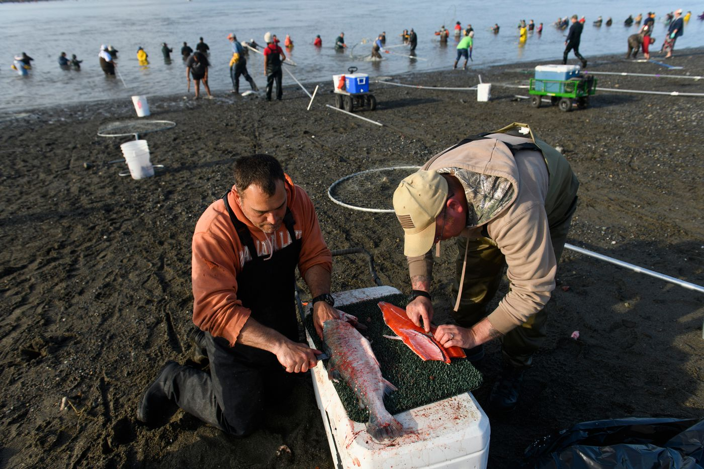 Warren Mitchell, left, and Jeremiah Wallace fillet salmon. (Marc Lester / ADN)