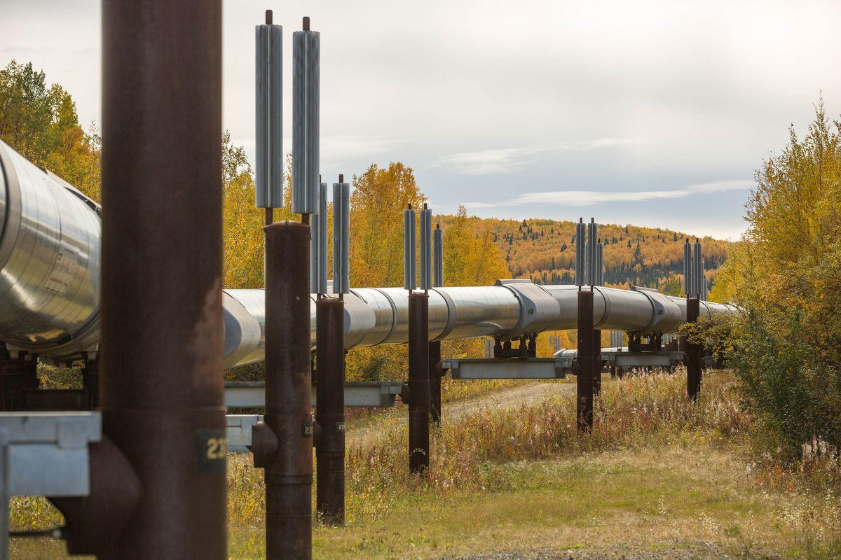 The trans-Alaska oil pipeline along the Elliot Highway north of Fairbanks on September 8, 2015. (Loren Holmes / ADN archive)