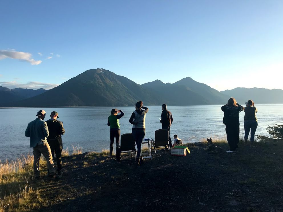 People watch belugas from a Seward Highway pullout on Aug. 9, 2018. Beluga Whale Alliance Citizen Science Program Coordinator Leah Wessler is third from left. (Beluga Whale Alliance photo)