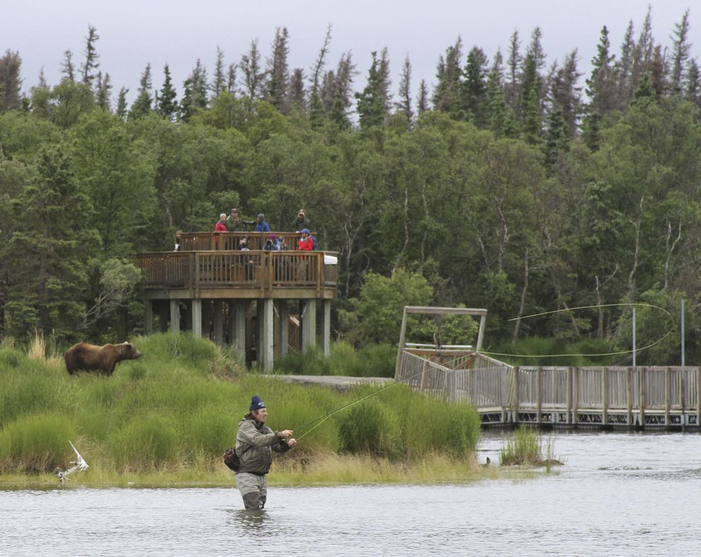 In this July 4, 2013, file photo, a bear walks between a viewing stand and a fisherman in Katmai National Park and Preserve. (AP File Photo/Mark Thiessen, File)