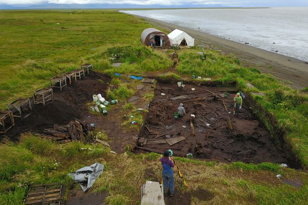 The Nunalleq archaeological site sits next to the Bering Sea near Quinhagak. The dig is filled back in at the end of the season to protect it in winter, and sandbags are packed across the face of the bluff to slow erosion. (Sven Haakanson)