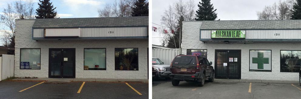 Alaskan Leafin 2016, left, and 2018, right. (Annie Zak / ADN)