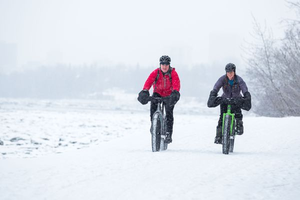 Bikers ride their fat tire bikes along the coastal trail near Lyn Ary park on Wednesday, January 13, 2016. (Loren Holmes / ADN archive 2016)