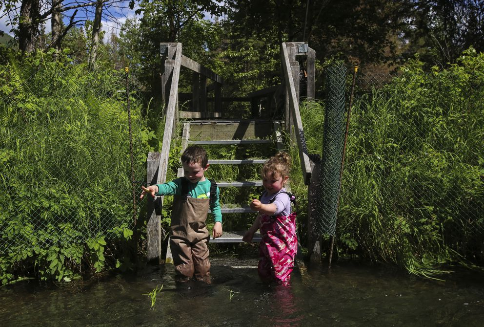 Harlan Brown, 5, and his sister, Teagan Brown, 4, play along the edge of the Russian River while their parents fish for sockeye salmon nearby. (Emily Mesner / ADN)