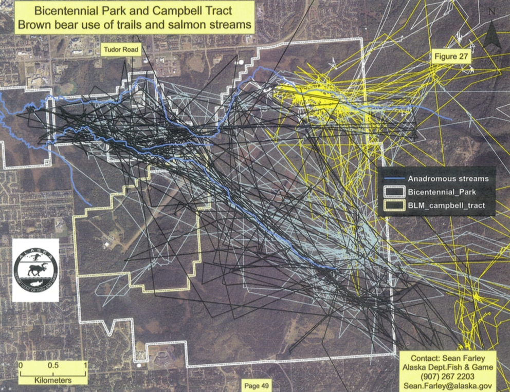 A map showing movement of collared grizzly bears in and around Far North Bicentennial Park and the Campbell Tract in East Anchorage,. (Alaska Department of Fish and Game)