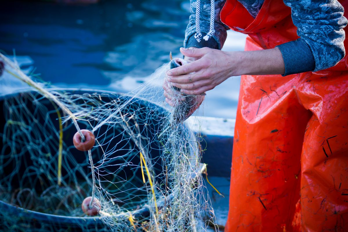 Federal government approves nearly $50M in pandemic aid for Alaska's fishing industry