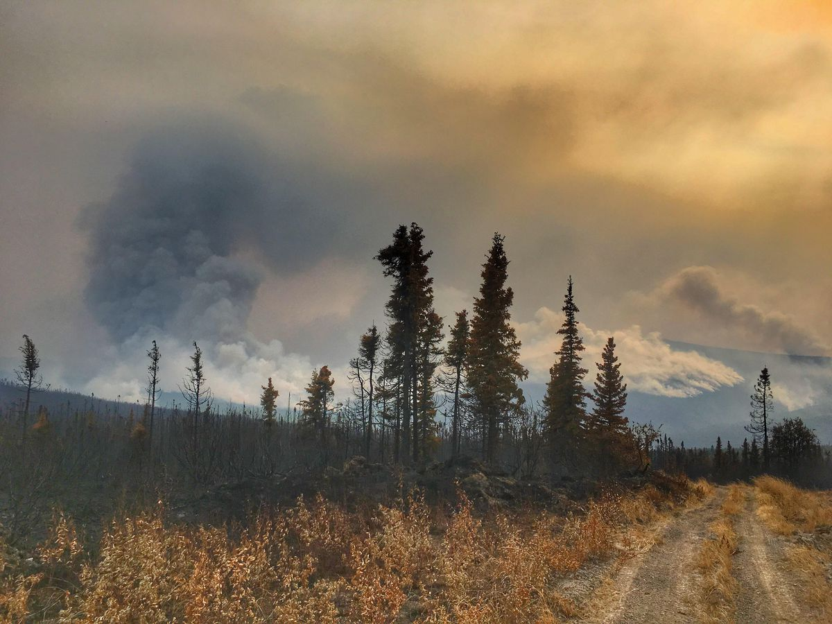 The Hess Creek fire burned 172,548 acres, or about 269 square miles as of July 9, 2019. It is the largest wildfire in the United States so far this year. (Photo from the Alaska Fire Service, BLM)