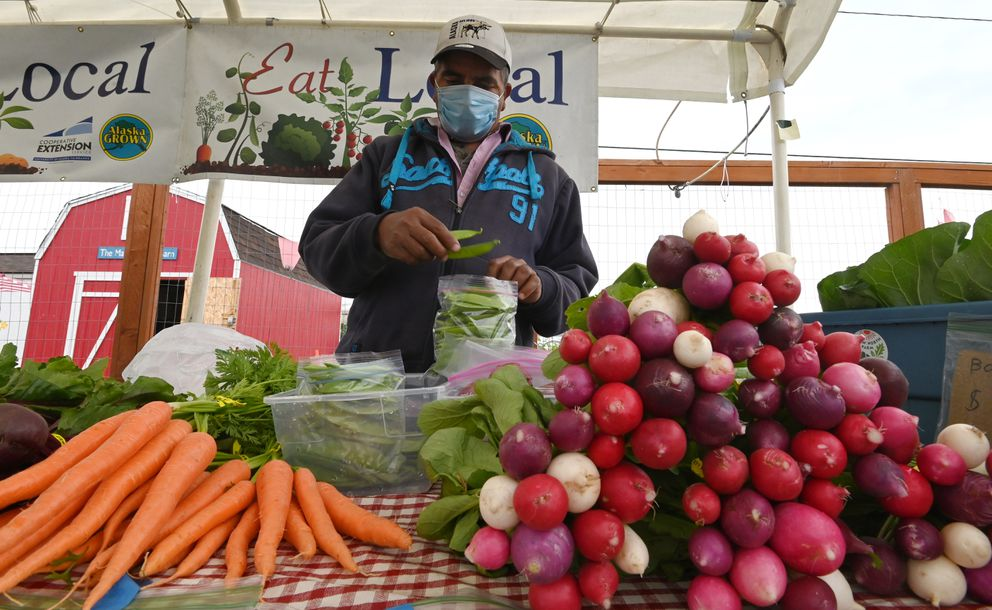 Prem Niroula bags snap peas that he grew as he tends a produce stand at the Grow North Farms in Mountain View on Sunday. Niroula grew the carrots and radishes in the foreground. (Bill Roth / ADN)