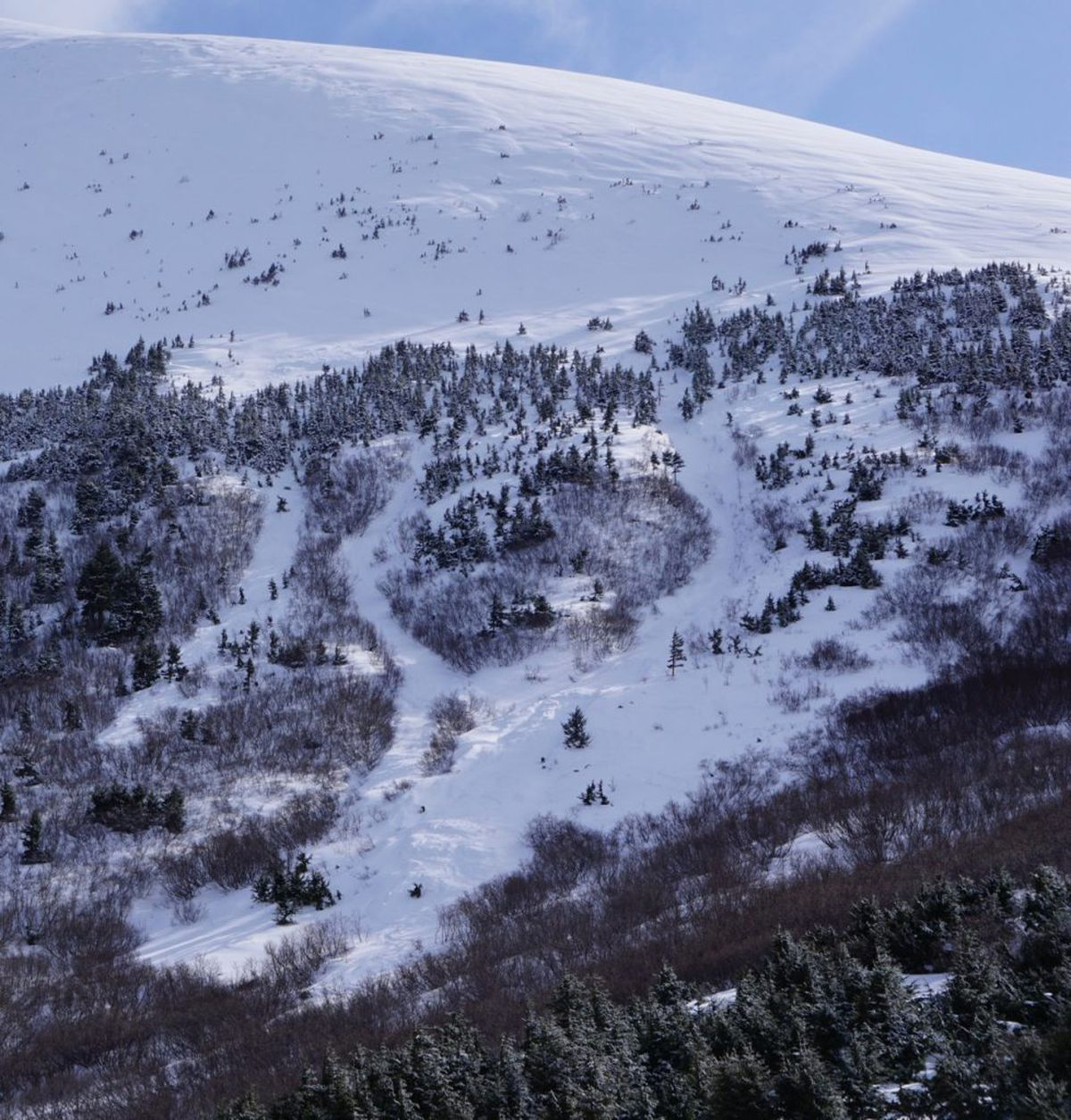 The avalanche that occurred on March 9, 2019, on a slope off Madson Mountain just above Crescent Lake killed 33-year-old backcountry skier Jeffrey Cheng, of Anchorage. Three days later, when this photo was taken, the crown of the avalanche was completely blown in. Based on a description from the parties involved, the crown was in the peppered trees above the treeline and the avalanche ran in three channels of debris. (Courtesy Chugach National Forest Avalanche Information Center)
