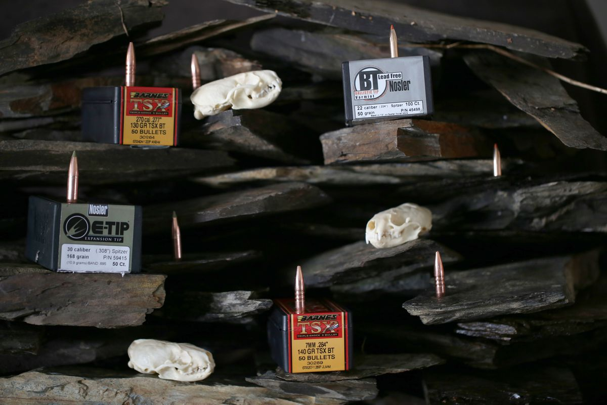 The variety of non-toxic rifle bullets continues to grow and they are proving successful in the hunting fields. (Steve Meyer)
