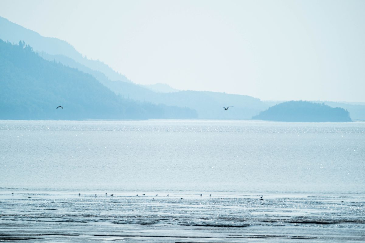 Haze obscures mountains on the Kenai Peninsula in a view from the Anchorage Coastal Wildlife Refuge on Saturday, July 17, 2021. (Loren Holmes / ADN)
