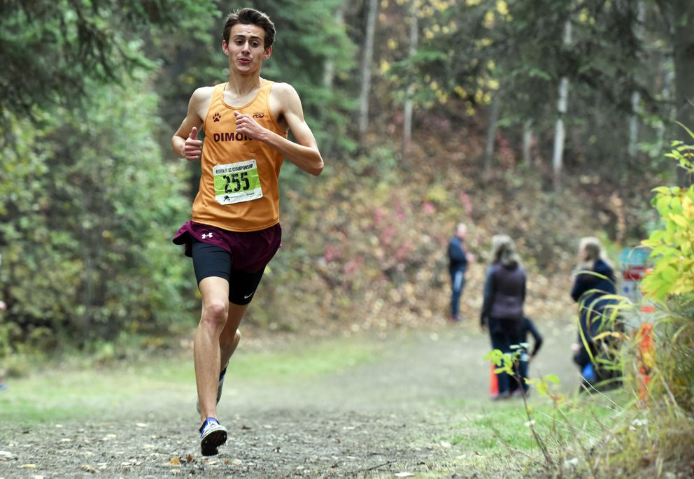 Dimond's Sonny Prosser nears the finish line of the Cook Inlet Conference cross country championships Saturday at Bartlett High. (Matt Tunseth / ADN)
