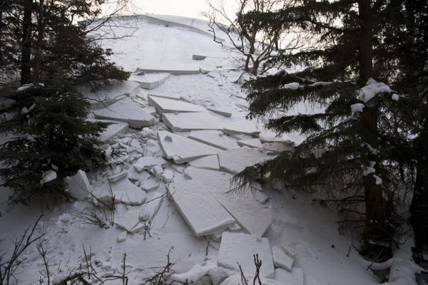 Slabs of snow slid from a sand dune hill at Kincaid Park near the Jodhpur Motocross Track recently. Three skiers in the Junior Nordic program were momentarily caught in an avalanche at the site on February 1, 2020. Photographed on February 4, 2020. (Marc Lester / Anchorage Daily News)