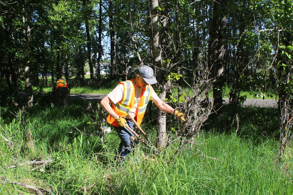 Kirk Hastain helps clear brush during the Take Back Our Community event Saturday. (Tegan Hanlon / ADN)
