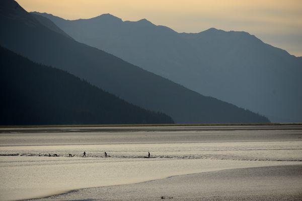 The Kenai Mountains provide a backdrop for the surfers. (Bob Hallinen / ADN)
