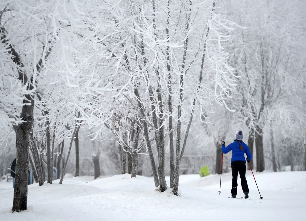 Trees frosted by fog frame a skier on the Chester Creek Trail last winter, at Westchester Lagoon. (Erik Hill / ADN)