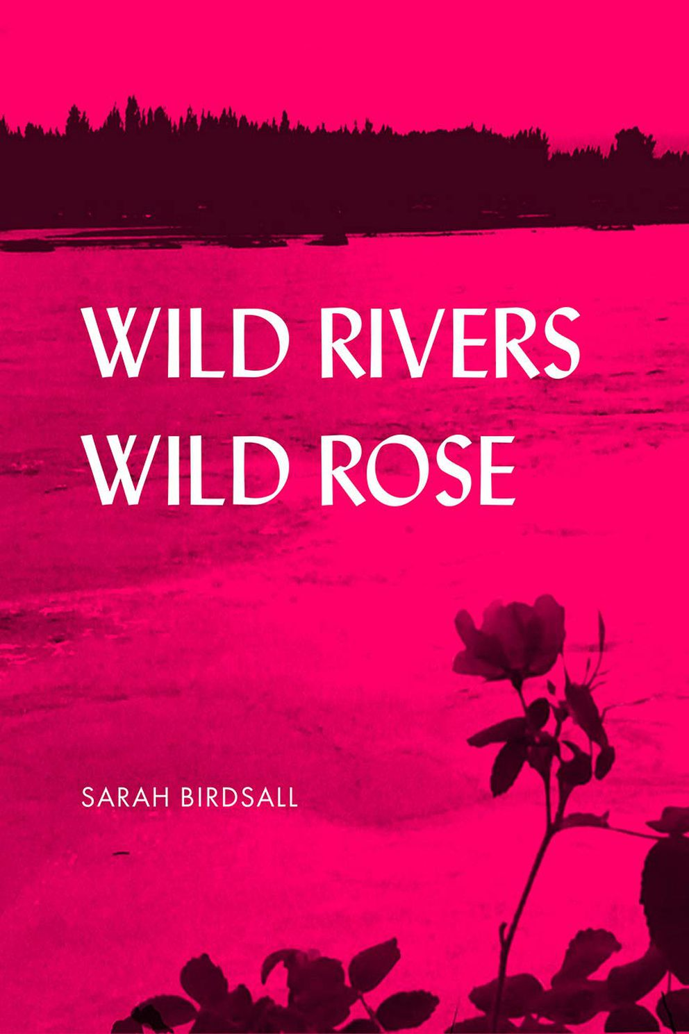 'Wild Rivers, Wild Rose, ' by Sarah Birdsall