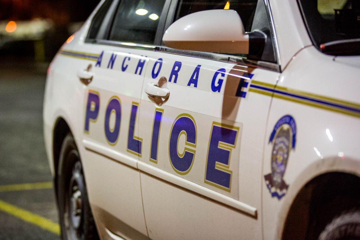 Anchorage Police Department activity, Nov. 2, 2013.
